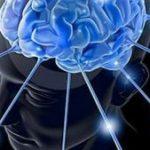 Le mystérieux Hendricus Loos et ses dispositifs de manipulation du système nerveux